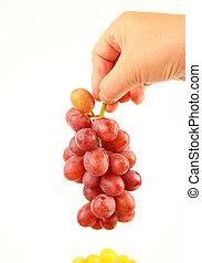 Female hands holding fresh grapes