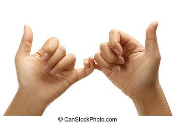 Female hands making  union friendly positive gesture
