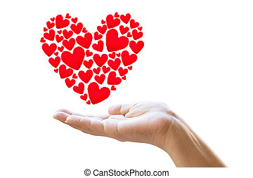 Female hands taking care of red hearts symbol isolated on white