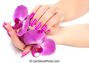 female hands with orchid flower. isolated