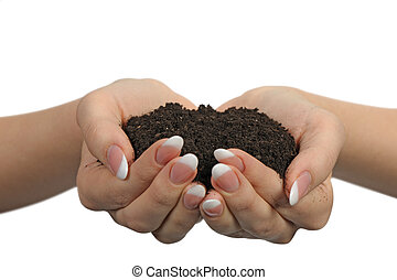 Female hands with soil