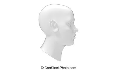 Female head mannequin 3D rendering isolated on a white background.
