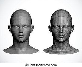 Female heads. Vector illustration - Vector heads. Spline are...