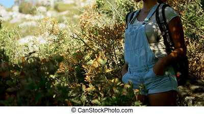 Female hiker standing with hands on hip at countryside 4k -...