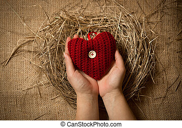 female holding red knitted heart in hands at nest - Closeup...