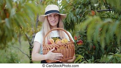 Female horticulturist holding basket full of ripe peaches