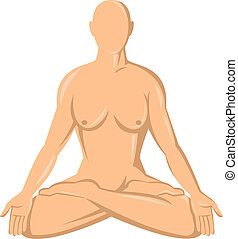 female human anatomy yoga lotus  isolated on whte