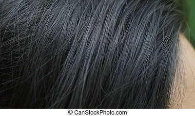 Female human hair. - Detail of hair on Asian woman. Closeup.