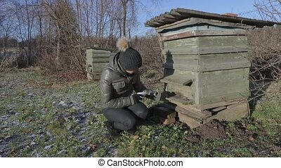 Female inspecting beehive before spring