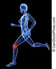 female jogger - 3d rendered illustration of a running female...