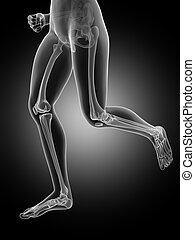 Female jogger - Jogging woman with visible leg bones