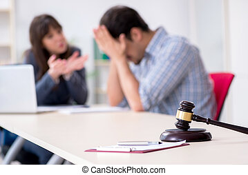 Female lawyer meeting with his male client in the office