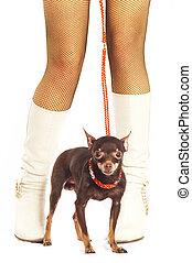 Female legs and dog.