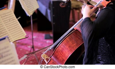 Female Musician Playing The Cello At Symphony Concert - This...