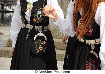 Female norwegean folk dresses