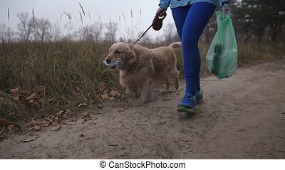 Female owner with dog doing plogging in woodland