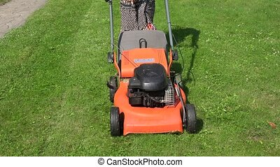 Female peasant woman in dress push lawn cut grass with mower...