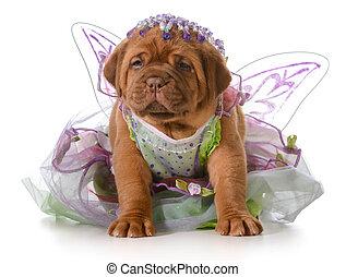 female puppy - dogue de bordeaux puppy wearing princess ...