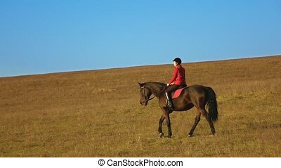 Female rider horseback riding a strong powerful brown...