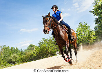 Female rider on beautiful horse running gallop