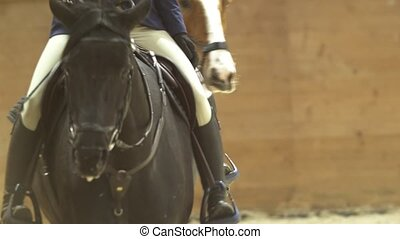 Female rider on the horse rideing at show jumping...