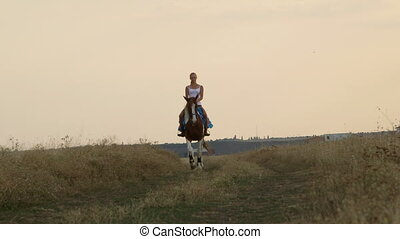 Female rider rides horse on road through the field in evening