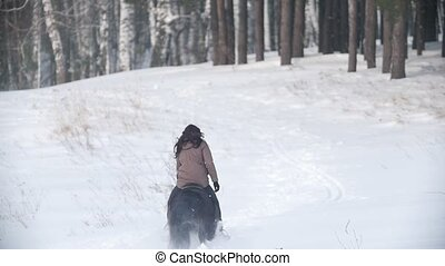 Female rider riding black horse through the snow, dog...