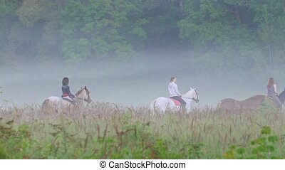 Female riders ride horses in the early foggy morning of...