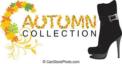 Female shoe. Autumn collection