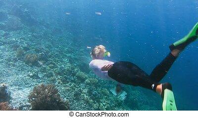 Female snorkeler in uv wetsuit swimwear swims along the reef...