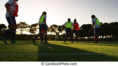 Female soccer team training on soccer field. 4k - Low view ...