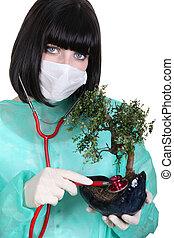 Female surgeon checking the health of a bonsai