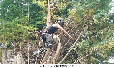 Female tree Surgeon using a chainsaw - Footage of a female...