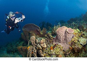 Female Underwater Photographer in St Lucia - Female...
