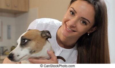 Female veterinarian turns dog's head - Pretty female...