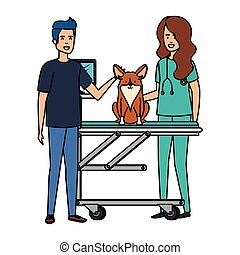 female veterinary with dog and owner in stretcher vector illustration