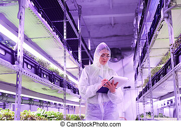 Female Worker in Greenhouse Plantation