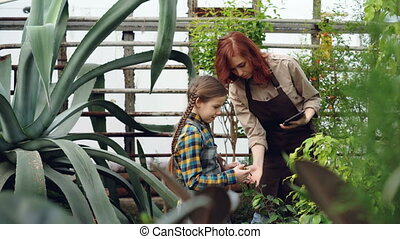 Female worker of greenhouse and her little daughter are...