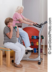 Females Doing Physical Exercise - Portrait of senior females...