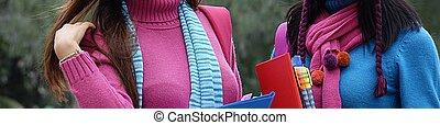 femininas, camisolas de malha, tempo frio