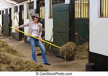 femininas, cavalo, criador, trabalhando, dentro, estável