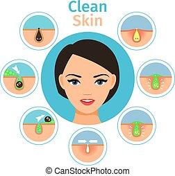 femininas, facial, ilustração, tratamentos