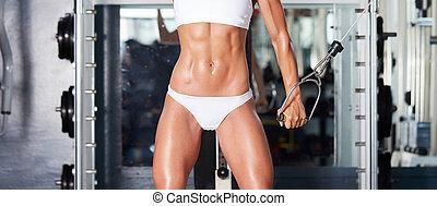 femininas, músculos abdominais