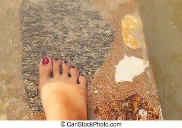 femininas, pés, mar, spa