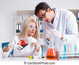 femme, échantillons, sac sang, docteur, regarder, femme