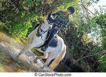 femme, équitation, jeune, cheval, river.