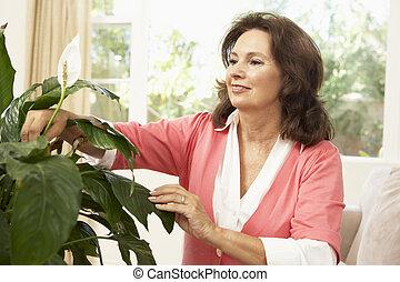 femme aînée, chez soi, regarder, houseplant