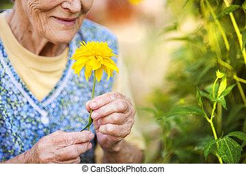 femme aînée, dans, jardin