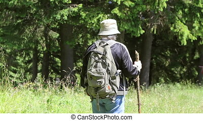 femme aînée, forêt, touriste