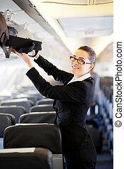 femme affaires, avion, joli